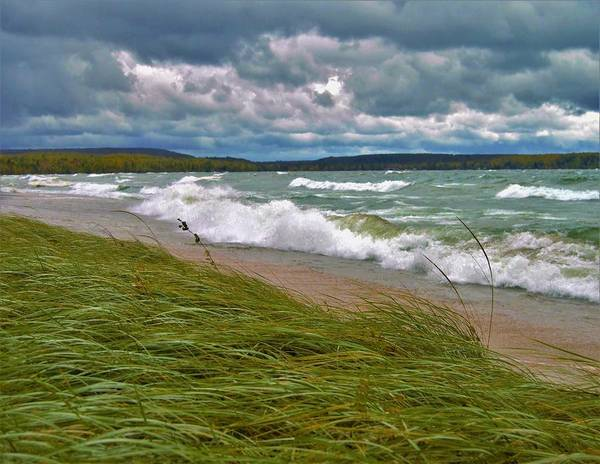 Photograph - Field Of Green On Lake Superior by Tom Kelly