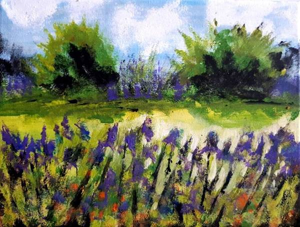 Painting - Field Of Irises by Nikki Dalton