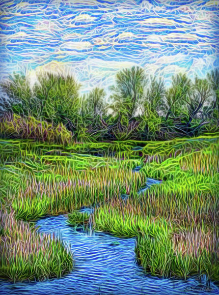Digital Art - Field Of Streams by Joel Bruce Wallach