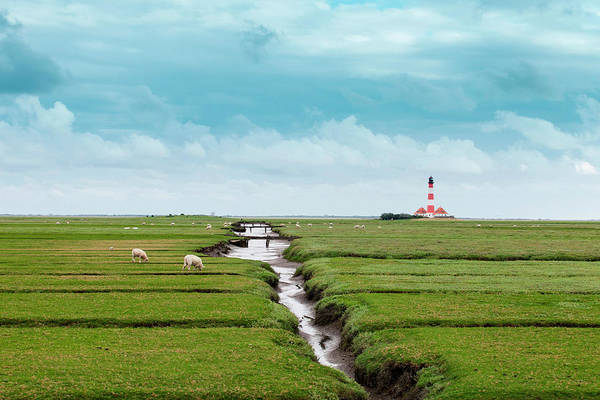 Wall Art - Photograph - Field With Distant Lighthouse by Sah
