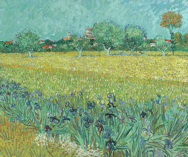 Wall Art - Painting - Field With Irises Near Arles by Vincent van Gogh