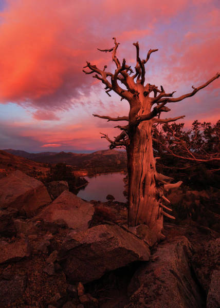 Lightroom Photograph - Fiery Autumn Sunset Over Red Lake by Mike Herron