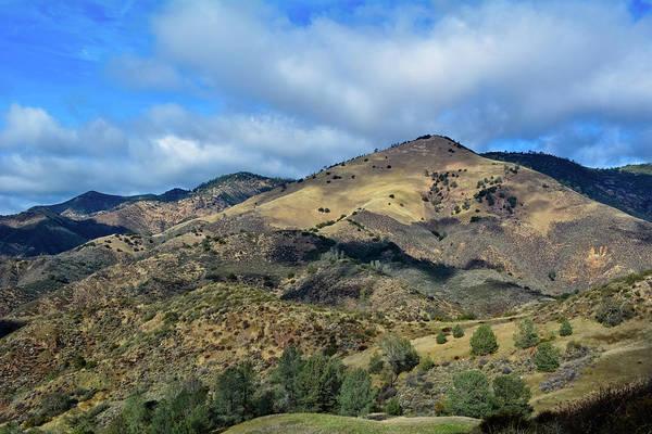 Photograph - Figueroa Mountain Recreation Area by Kyle Hanson