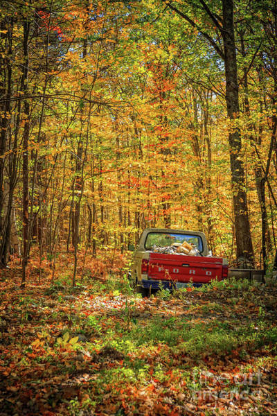 Wall Art - Photograph - Final Resting Place - Old Ford In The Forest by Edward Fielding