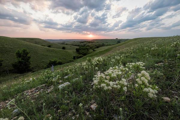 Photograph - Finally, Spring by Scott Bean