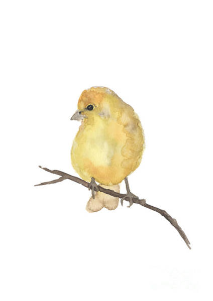 Wall Art - Painting - Finch Yellow Bird Watercolor Poster by Joanna Szmerdt