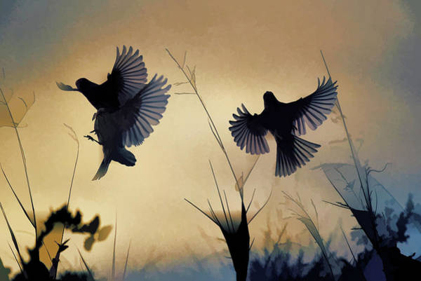 Bird In Flight Digital Art - Finches Silhouette With Leaves 6 Abstract  by Linda Brody