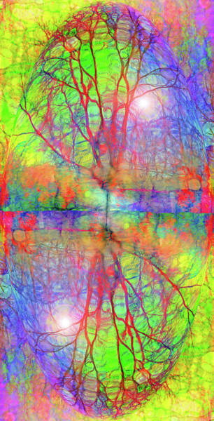 Digital Art - Finding Myself In Your Colour And In Your Light by Tara Turner