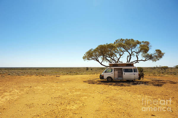 Remote Photograph - Finding Shade Under A Lone Tree While by Pics By Nick