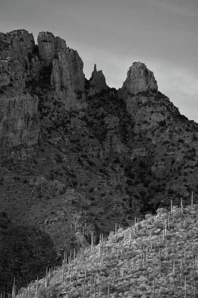 Photograph - Finger Rock Canyon Black And White by Chance Kafka