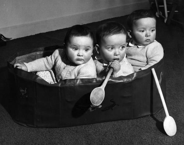 Triplets Photograph - Finslater Triplets by Housewife