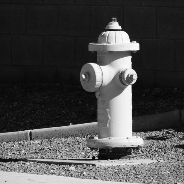 Water Hydrant Photograph - Fire Hydrant  by Bill Tomsa