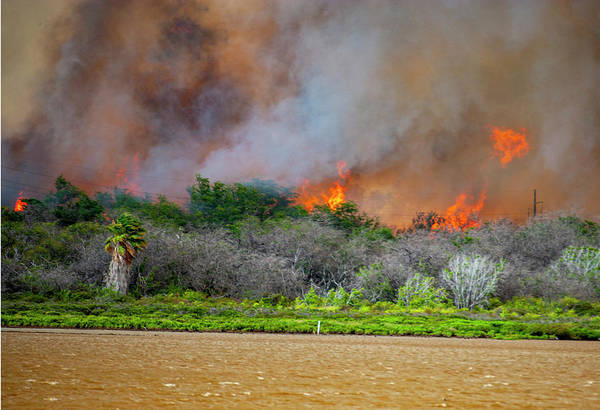 Photograph - Fire In Paradise by Anthony Jones