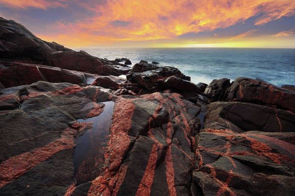 Wall Art - Photograph - Fire On The Ground And In The Sky by Yu Liu Photography