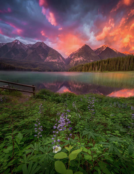 Photograph - Fire Skies / Holland Lake, Montana   by Nicholas Parker
