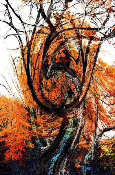 Photograph - Fire Tree 2 by Michael Arend