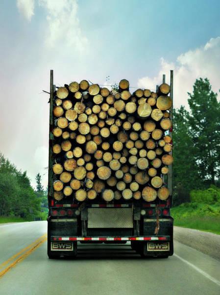 Photograph - Fire Wood by Cyryn Fyrcyd