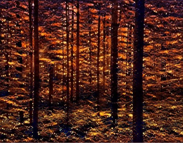 Mottled Mixed Media - Firefly Woodlands V by Marshall Thomas