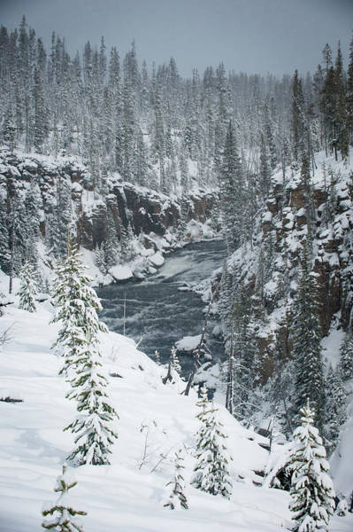 Photograph - Firehole River Yellowstone by Mark Duehmig