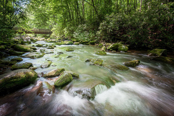 Photograph - Fires Creek, North Carolina by Mark Duehmig