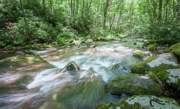 Photograph - Fires Creek Rapids by Mark Duehmig