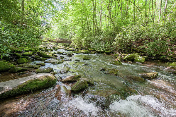 Photograph - Fires Creek Summer by Mark Duehmig