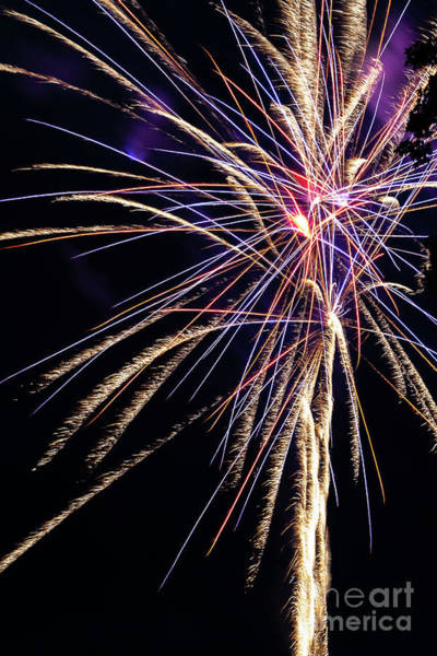 Photograph - Fireworks 2019 - 1 by William Norton