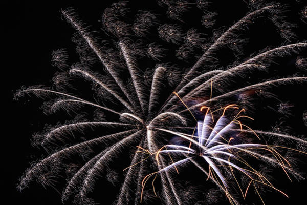 Wall Art - Photograph - Fireworks 2019 Eleven by Marnie Patchett