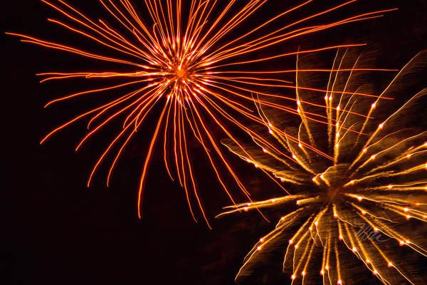 Photograph - Fireworks Fur Ball by Meta Gatschenberger