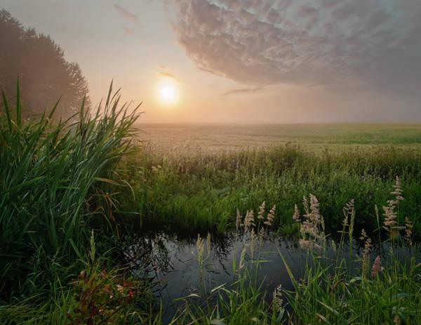 Photograph - First Days Of Autumn by Dan Jurak