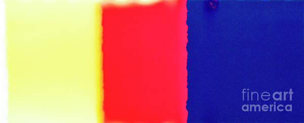 Wall Art - Photograph - First Light On Analog Color Film 1 by Guido Koppes