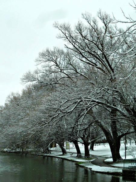 Photograph - First Snow Fall 12 by Cyryn Fyrcyd