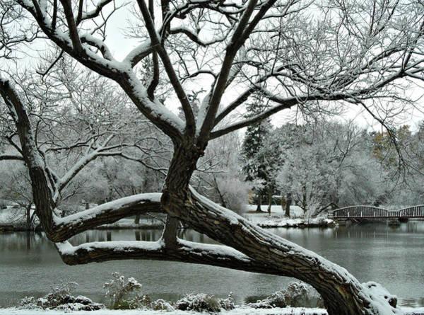 Photograph - First Snow Fall 13 by Cyryn Fyrcyd