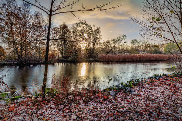 Photograph - First Snow Morning #i0 by Leif Sohlman