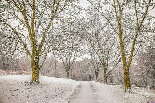 Wall Art - Digital Art - First Snow Of Winter by Randy Steele