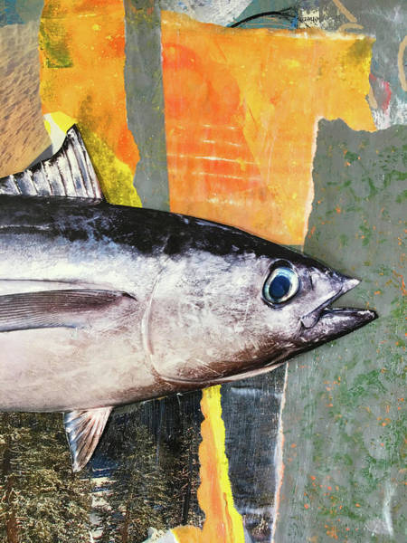 Native Mixed Media - Fish Collage by Nancy Merkle