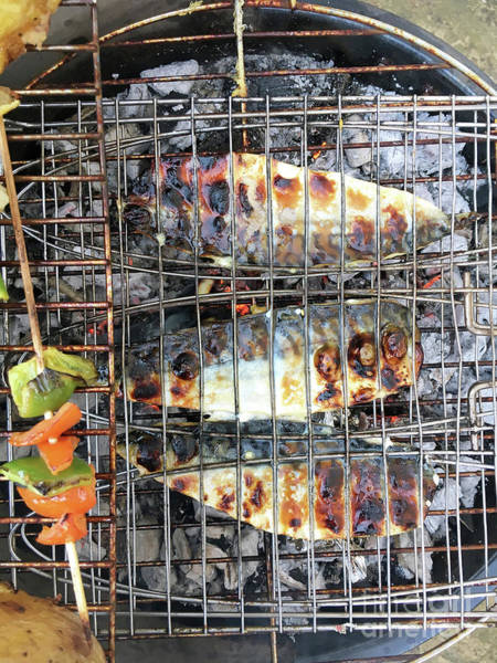 Barbeque Photograph - Fish On A Barbeque by Tom Gowanlock