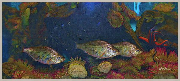 Oregon Coast Mixed Media - Fish Parade by Claudia O'Brien