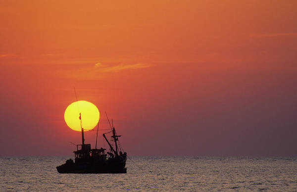 Goa Photograph - Fishing Boat At Sunset by David Cayless