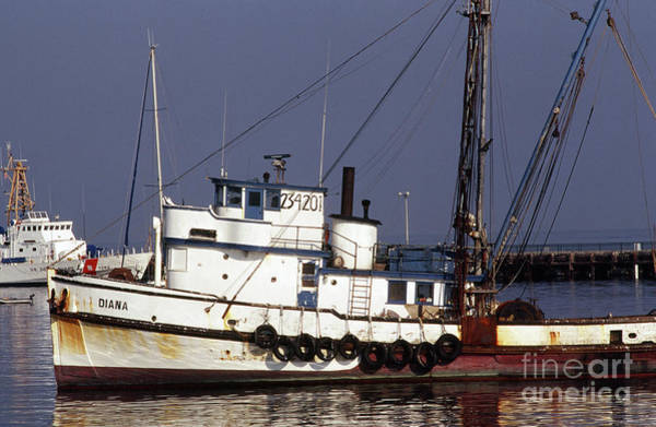 Photograph -  Fishing Boat Diana Owned By Pietro Maiorana, Monterey by California Views Archives Mr Pat Hathaway Archives