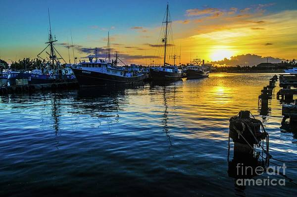 Photograph - Fishing Boats At Sunset by D Davila