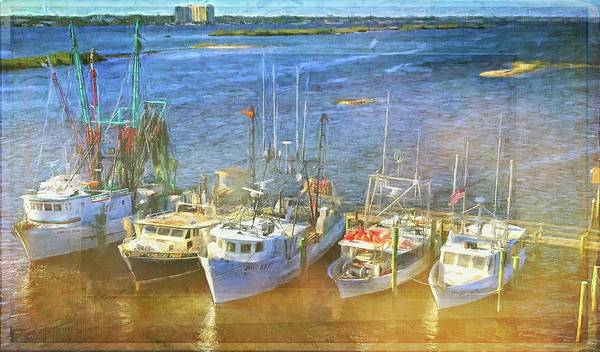 Photograph - Fishing Ready by Alice Gipson