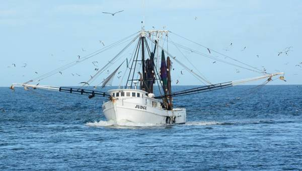 Photograph - Fishing Trawler Judge by Bradford Martin