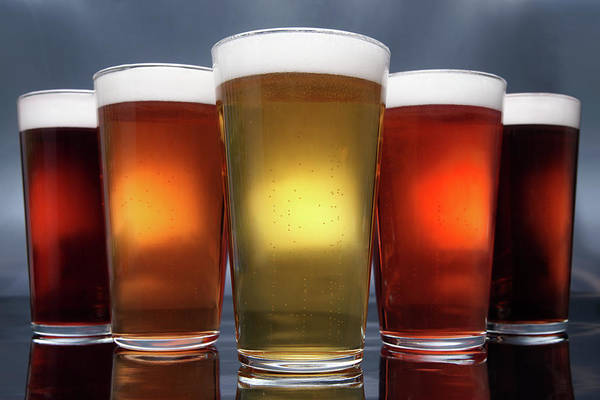 Lager Photograph - Five Pints Of Beer by Thecrimsonmonkey