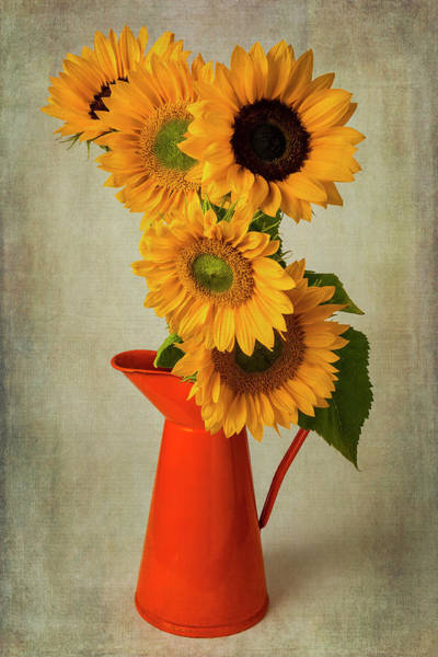 Bronze Leaf Wall Art - Photograph - Five Sunflowers In Orange Pitcher by Garry Gay