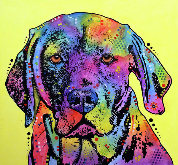 Wall Art - Painting - Fixate Labrador by Dean Russo Art