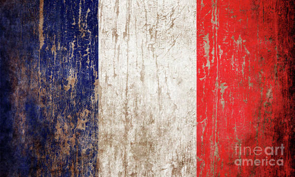 Wall Art - Photograph - Flag Of France by Jelena Jovanovic