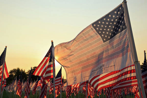 Usa Flag Photograph - Flag Of Honor And American Flags by Danita Delimont