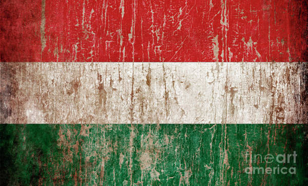 Wall Art - Photograph - Flag Of Hungary by Jelena Jovanovic