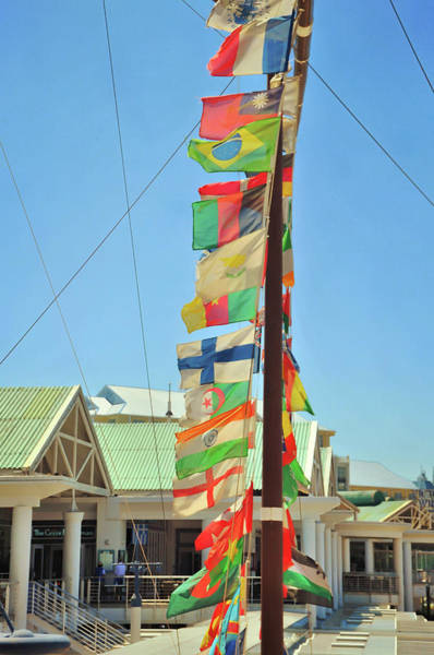 Photograph - Flag World by JAMART Photography